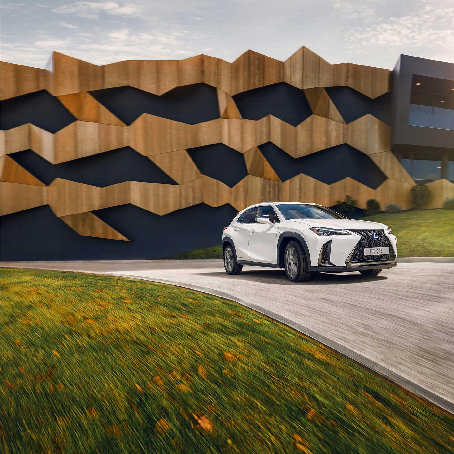 Lexus UX weiß in Landschaft