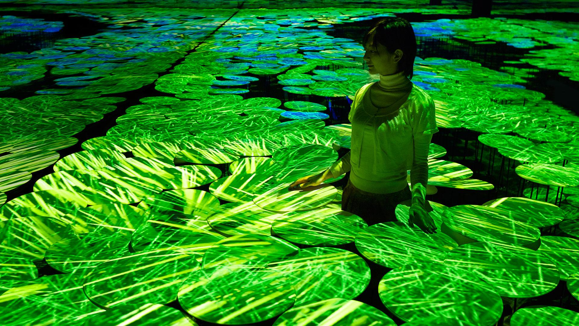 TeamLab presenta dos exposiciones de arte en el pabellón de Japón en la Expo Universal de Milán 2015
