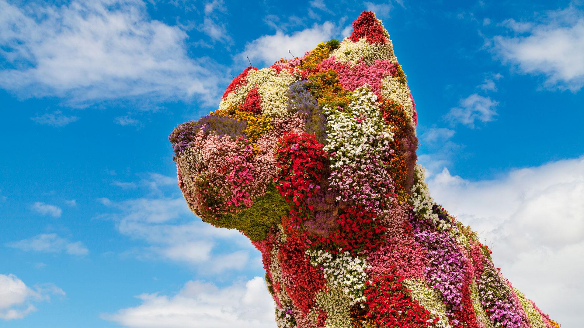 Puppy la mascota del Museo Guggenheim de Bilbao
