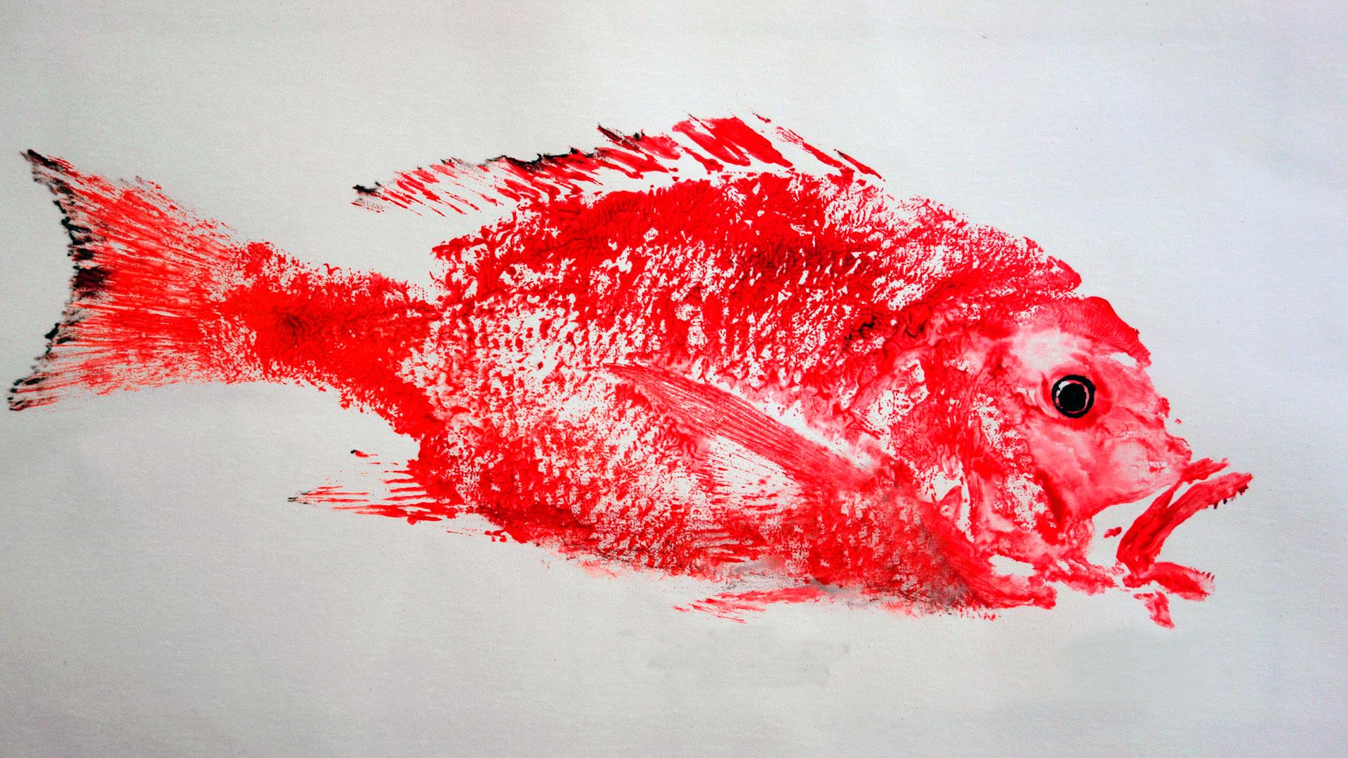 Aprende la estampación Gyotaku hero asset