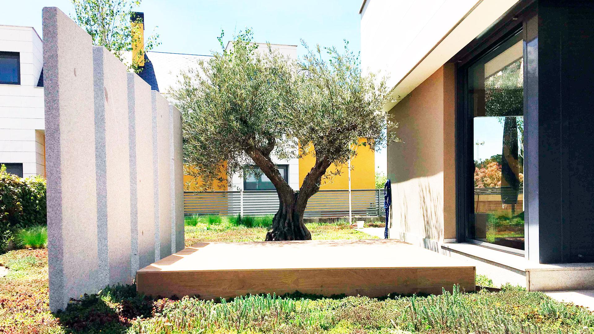 Jardines para combatir el aislamiento hero asset