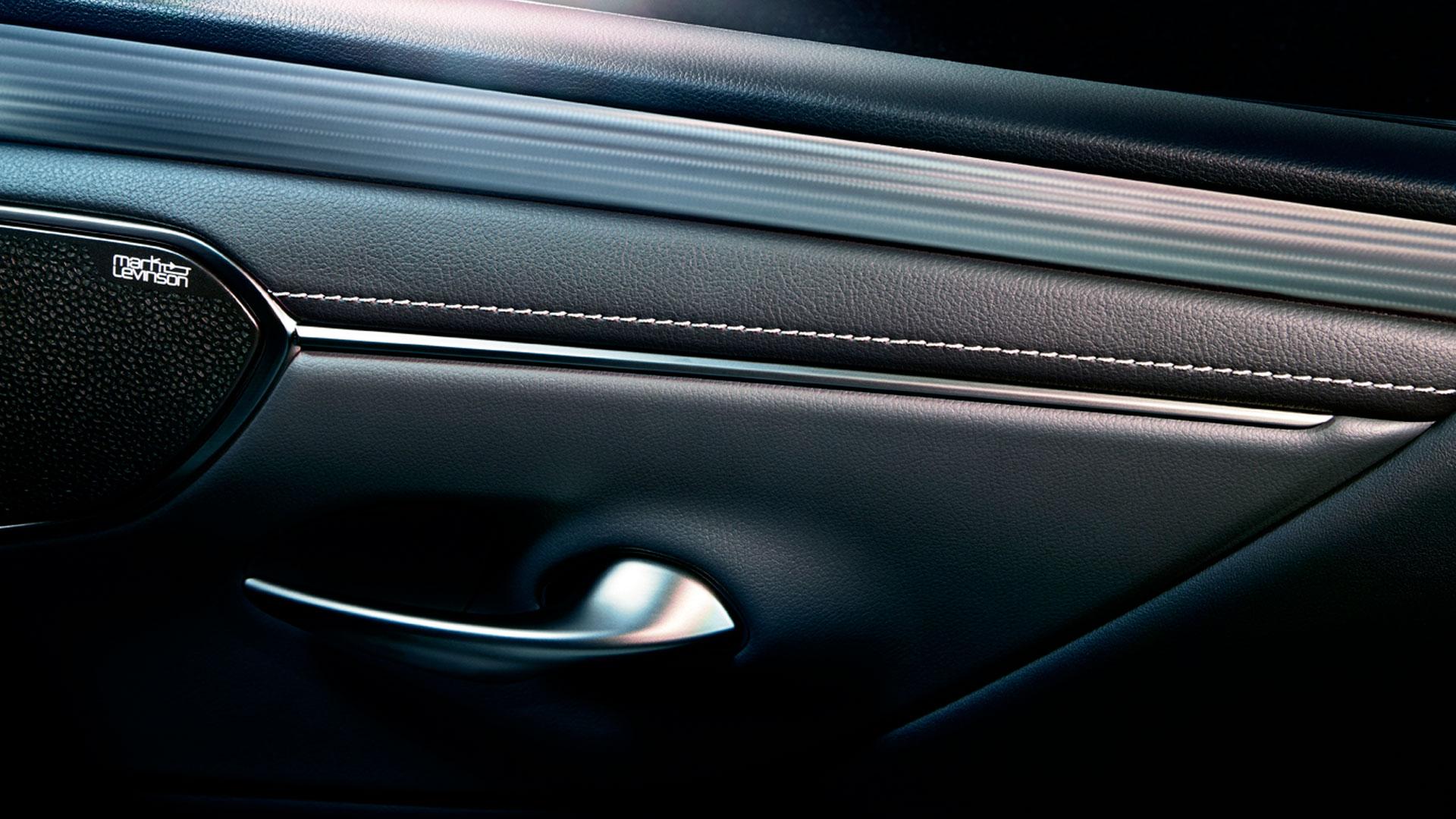 Imagen del interior de la puerta del Lexus ES 300h