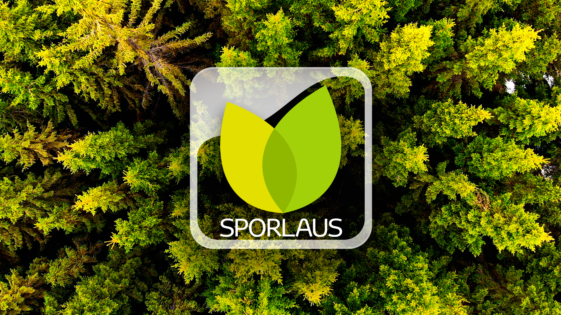 Sporlaus