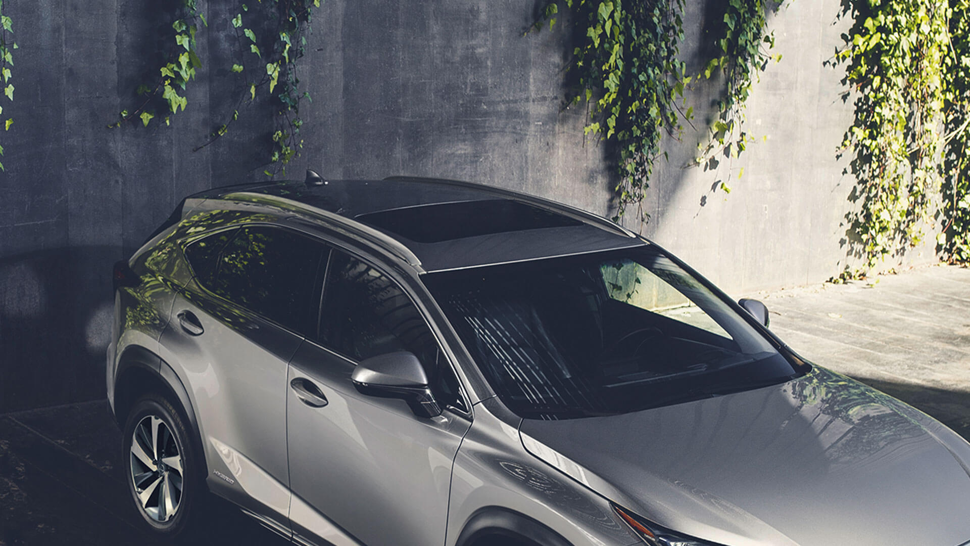 2018 lexus nx my18 features glass sunroof