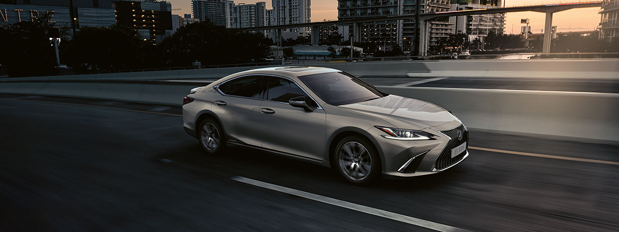 2021 lexus business grid hybrid for business
